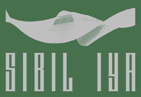 Антон Сибиль - SIBIL IYA project